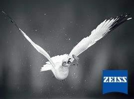 zeiss-box