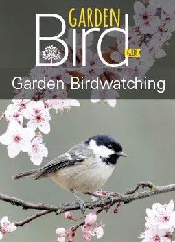 garden-birdwatching