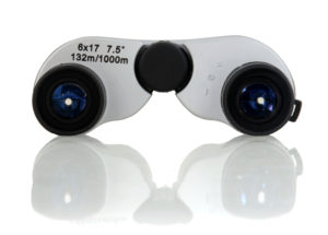 RSPB 6x17 Blue