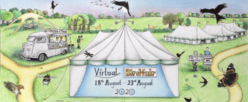 concept sketch of virtual birdfair august 2020